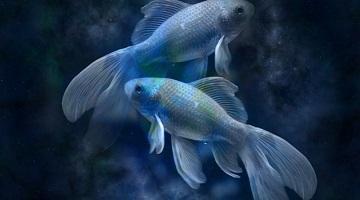 Horoskop ljubezen Ribi
