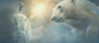 Pomen sanj | Sanje o medvedu
