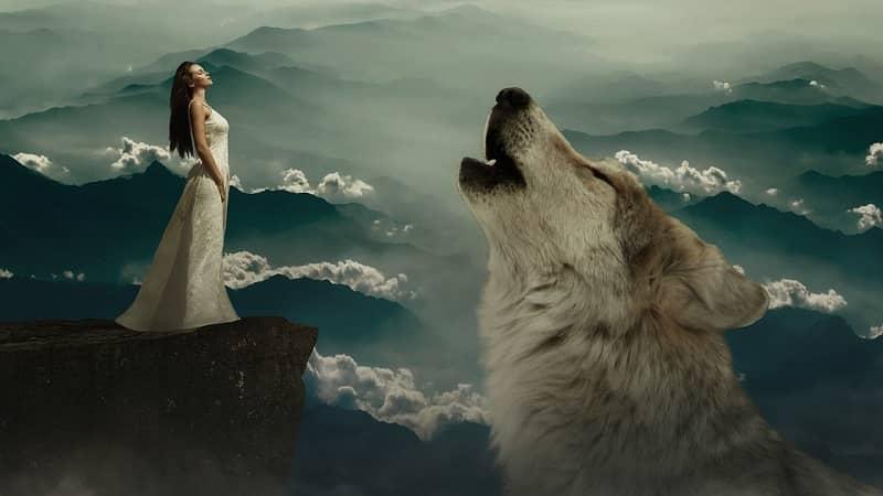 sanjati psa in sanje o psu