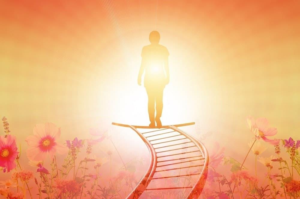 genetski zapis in božanska koda