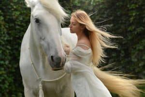 Kaj pomeni sanjati konja