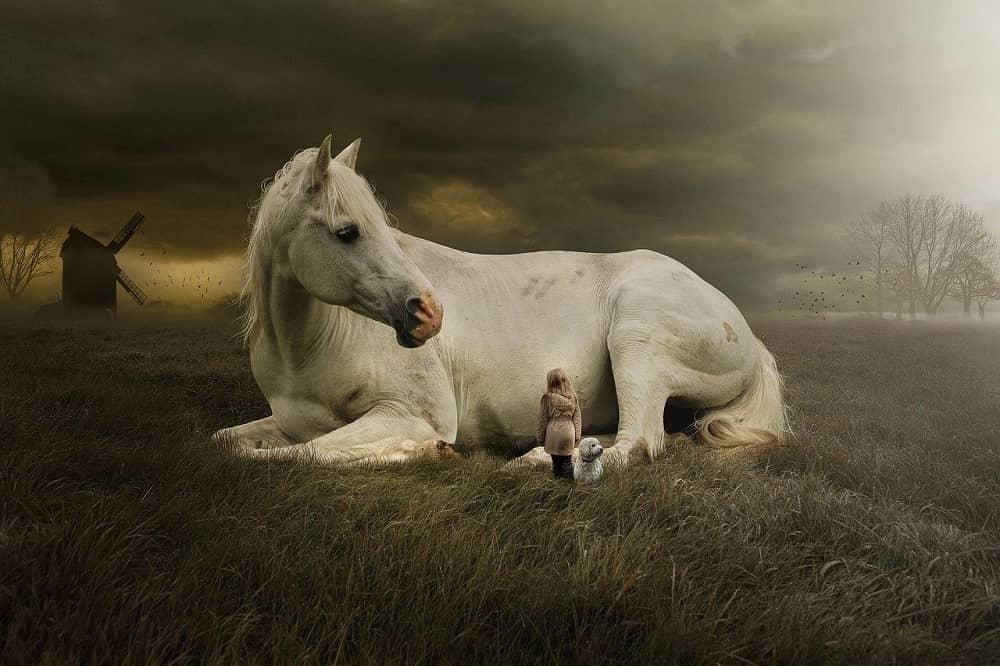 Sanjati konja
